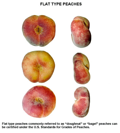 Donut Peaches- Official USDA Visual Aid